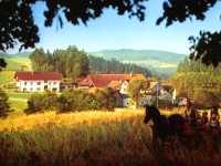 Bauernhofurlaub bei Cham - Bauernhöfe, Ferienhöfe, Reiterhöfe