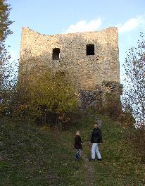 Burgruine in Zell