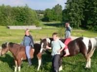 Urlaub am Bauernhof Kopp bei Bodenmais - Pony reiten