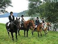Reitkurse Reitunterricht auf der Reitschule Fuchsenhof