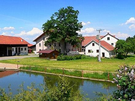 kinderfreundlicher Bauernhof Ansicht Guthof