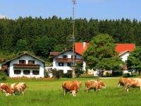 bauernhofurlaub-regen-wellnessurlaub-erlebnisurlaub-ferienhaus-ansicht.jpg