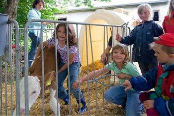 Ferienhof Frank Bauernhof für Kinder mit Tieren