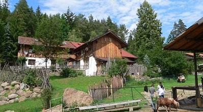 Richards Jagerhütte Ferienhütte in Bayern
