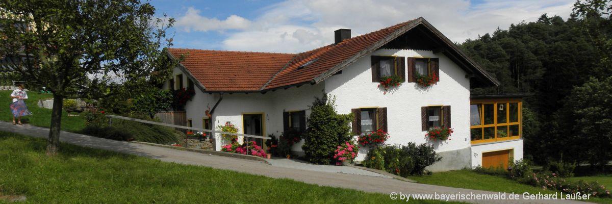 Bayerischer Wald Ferienhäuser