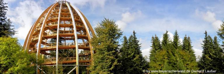bayerischer-wald-urlaub-unterkunft-hotels-niederbayern-gasthof-sehenswertes-panorama