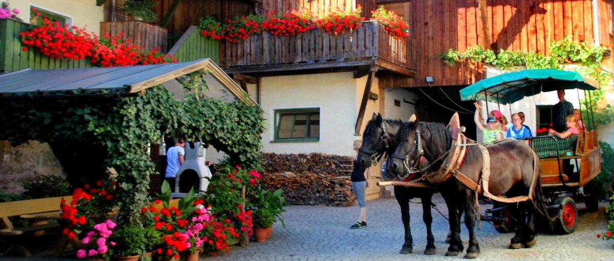 Bauernhof Brechenmacherhof Gehmannsberg bei Rinchnach