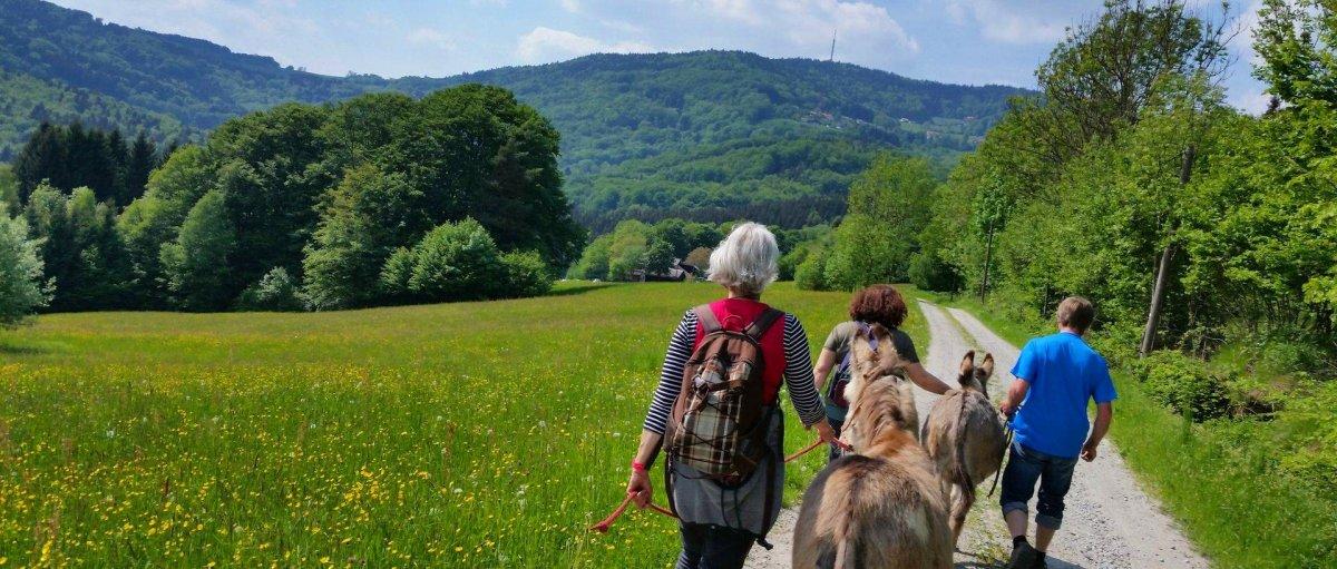 Hütte 2 Personen Bayerischer Wald Eselwandern mit Übernachtung in Bayern