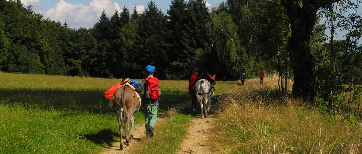 Kuschelige Ferienhütte für zwei im Bayerischen Wald am Eselhof mit Eselwanderung in Niederbayern
