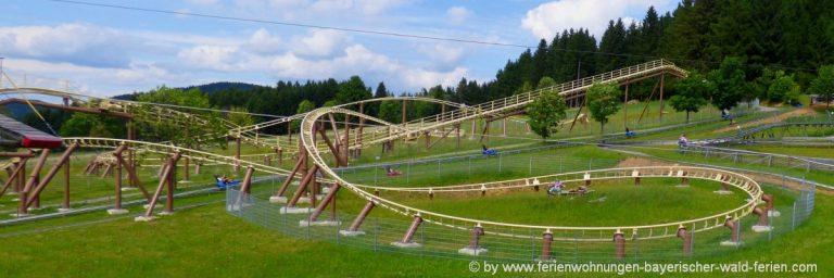 freizeitangebote-bayerischer-wald-sommerrodelbahn-niederbayern