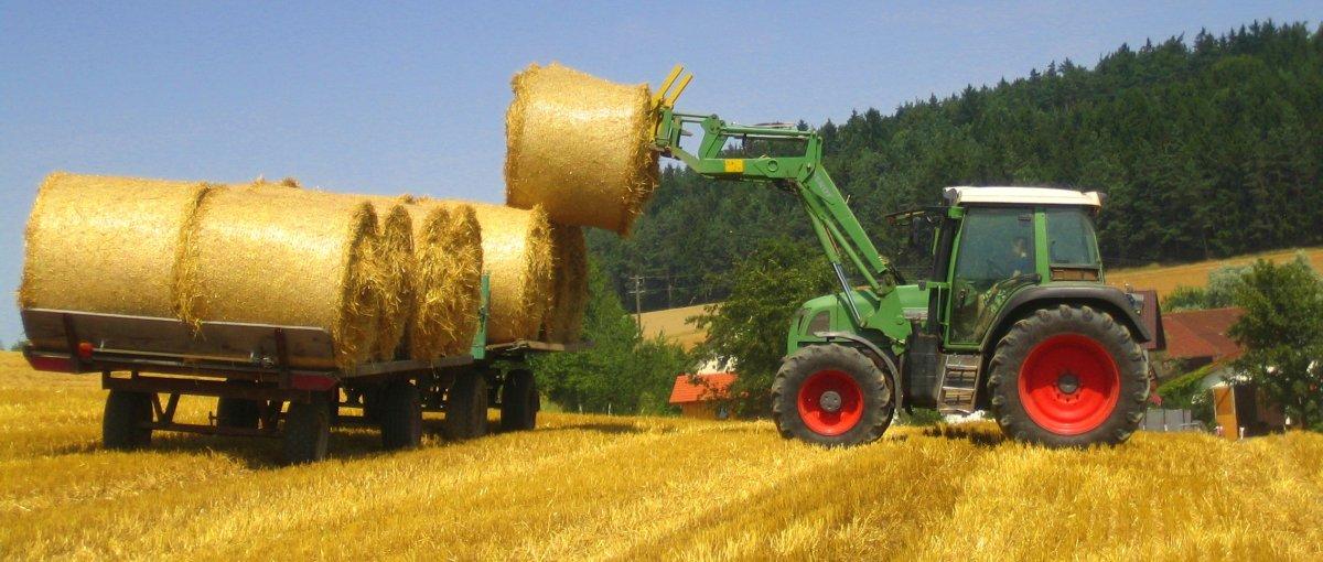 Urlaub in Michelsneukirchen Bauernhof mit Ponyreiten und Traktor fahren