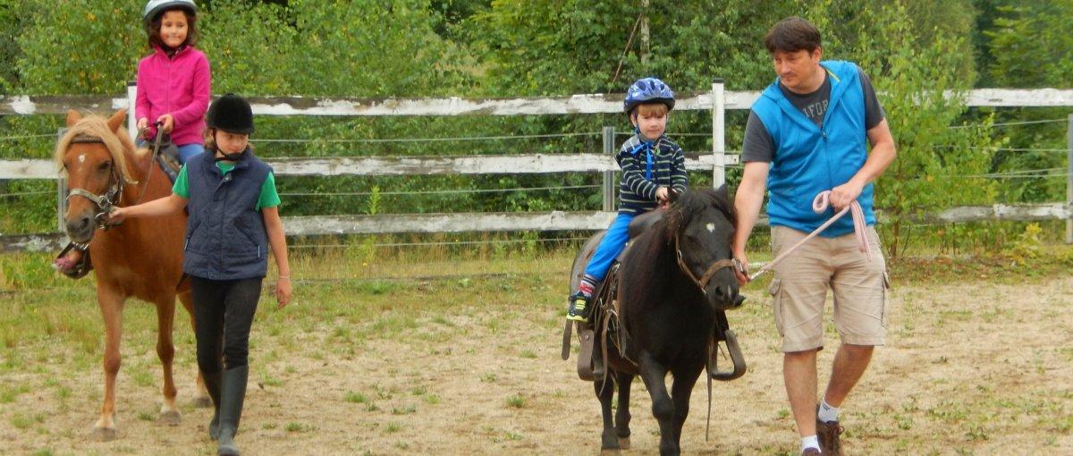 Preiswerte Ferienwohnungen am Bauernhof mit kostenlosem Ponyreiten