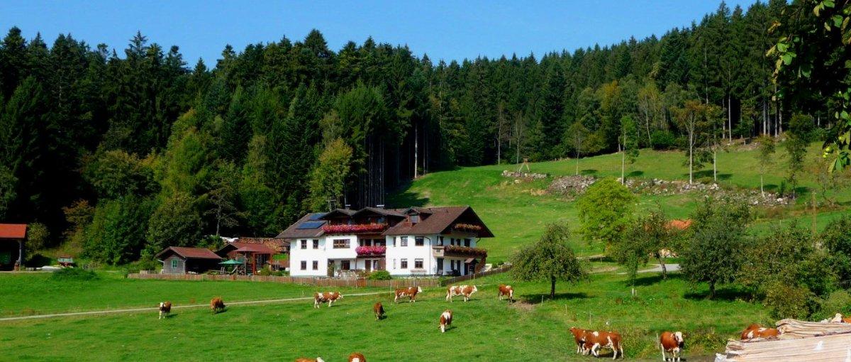 Hacker die Bergpension in Perlesried Bayerischer Wald