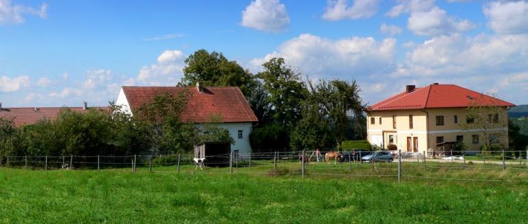 handlhof-walderbach-babybauernhof-oberpfalz-kinderbauernhof-1200