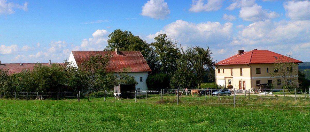 Bayerischer Wald Kinder Bauernhof mit Pool in Bayern