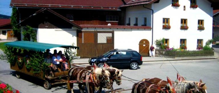 kroner-rinchnach-bauernhofurlaub-regen-grafenau-pferde