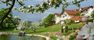 Landhotel Miethaner am Höllensteinsee Bayerischer Wald