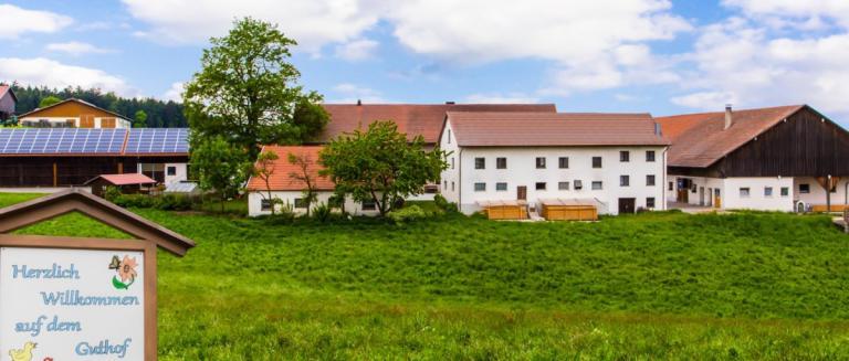 piendl-guthof-ferienwohnungen-michelsneukirchen-bauernhofurlaub