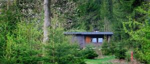 Plattenhöhe in Rinchnach – einsame Hütte im Wald mieten