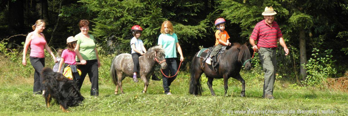 Reiterferien im Bayerischen Wald