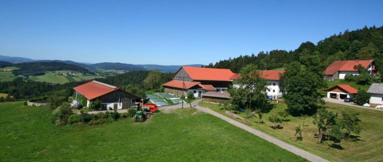 schätzl-bauernhof-waldkirchen-ferienwohnungen-familienurlaub-1200