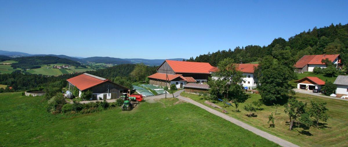 Ferienhof Schätzl Waldkirchen Bauernhofurlaub Familienurlaub