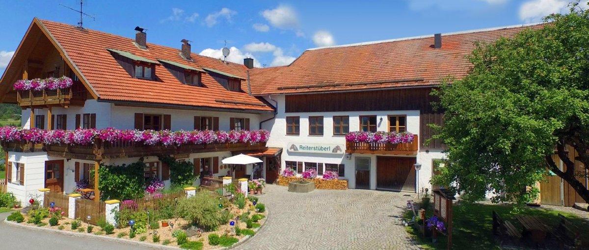 Reitstall Schanzer Neureichenau Reiterhof bei Freyung Grafenau