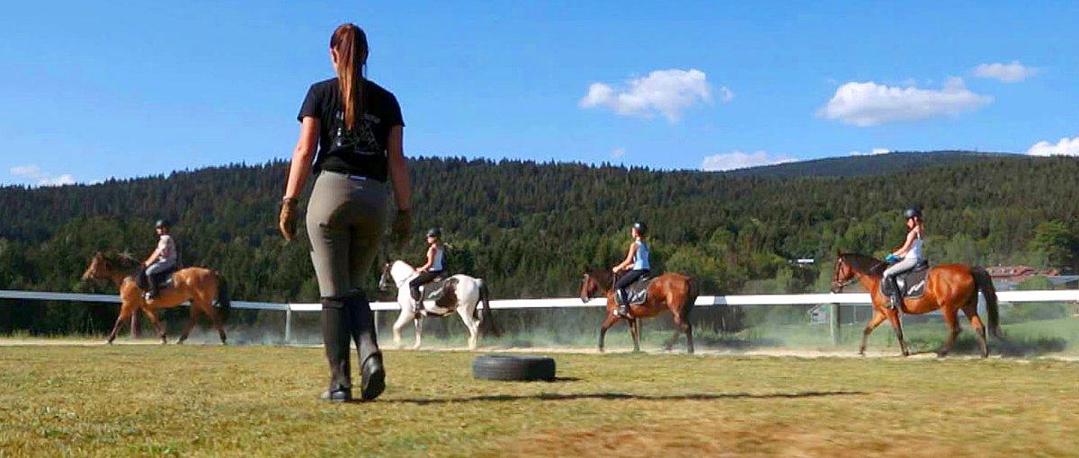Reiterferien im Dreiländereck Bayerischer Wald Ausritte und Reitunterricht im Urlaub