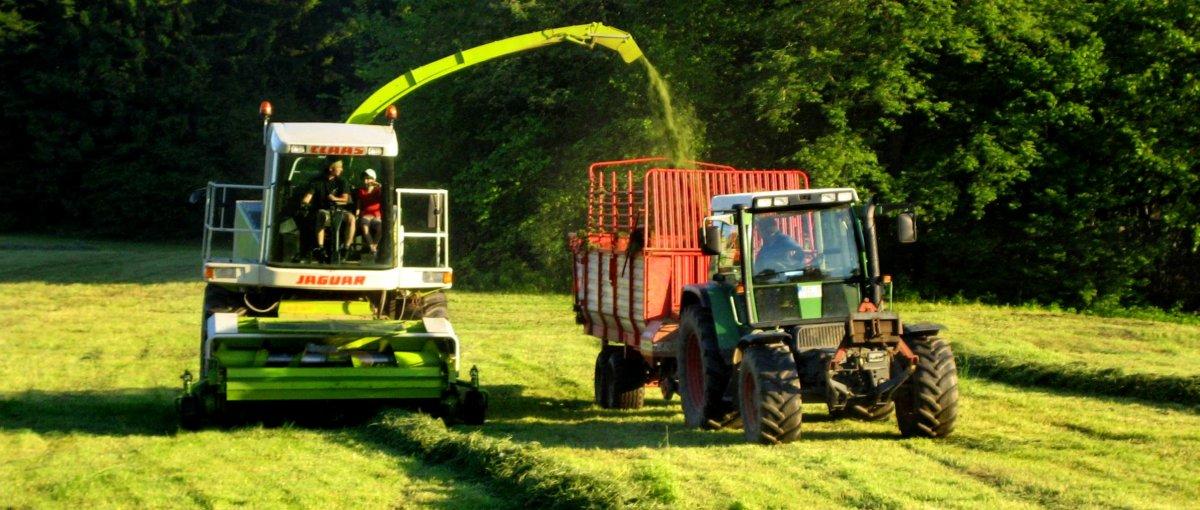 Traktor fahren bei Schneider Hoffelder Wirt Bauernhof in Tiefenbach Oberpfalz