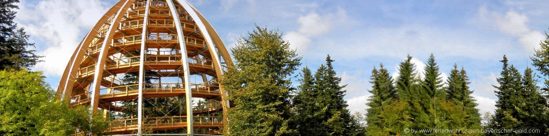 Bayerischer Wald Ausflugsziele und Sehenswürdigkeiten erkunden