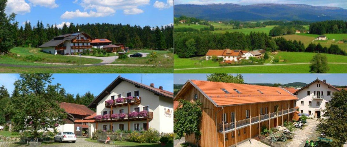 traumhöfe-bayerischer-wald-dreiländereck-unterkunft-freyung-passau