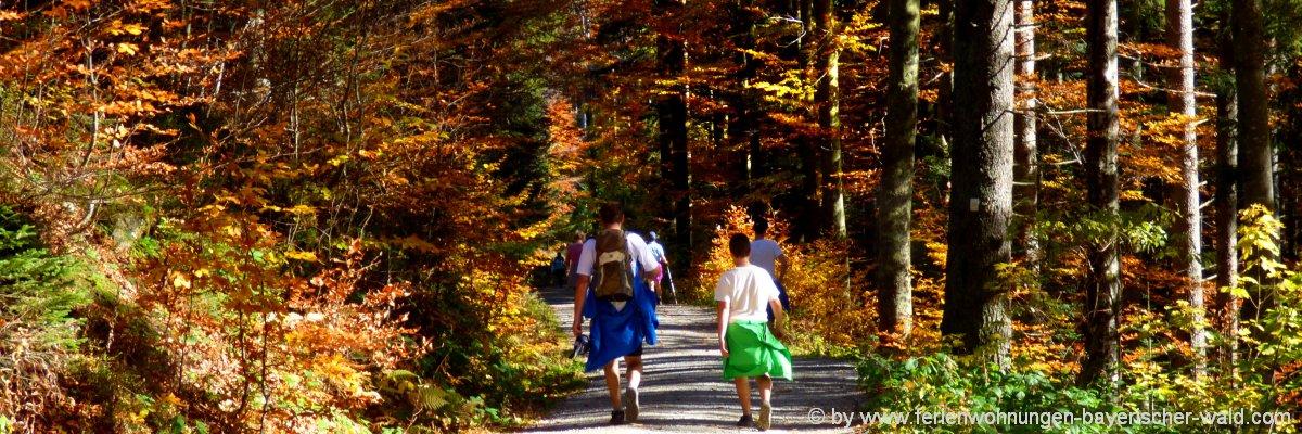 Wanderurlaub im Bayerischen Wald