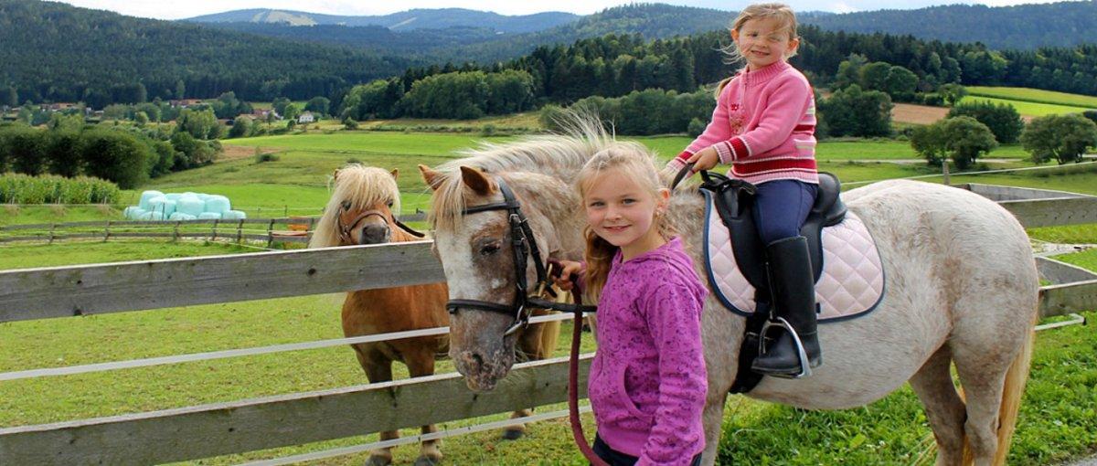 Familien und Wellness Urlaub im Geisskopf Hotel nähe Bischofsmais Bayerischer Wald