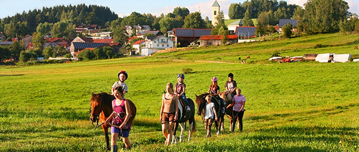 Bauernhof Weiderer in Schweinhütt bei Regen & Zwiesel