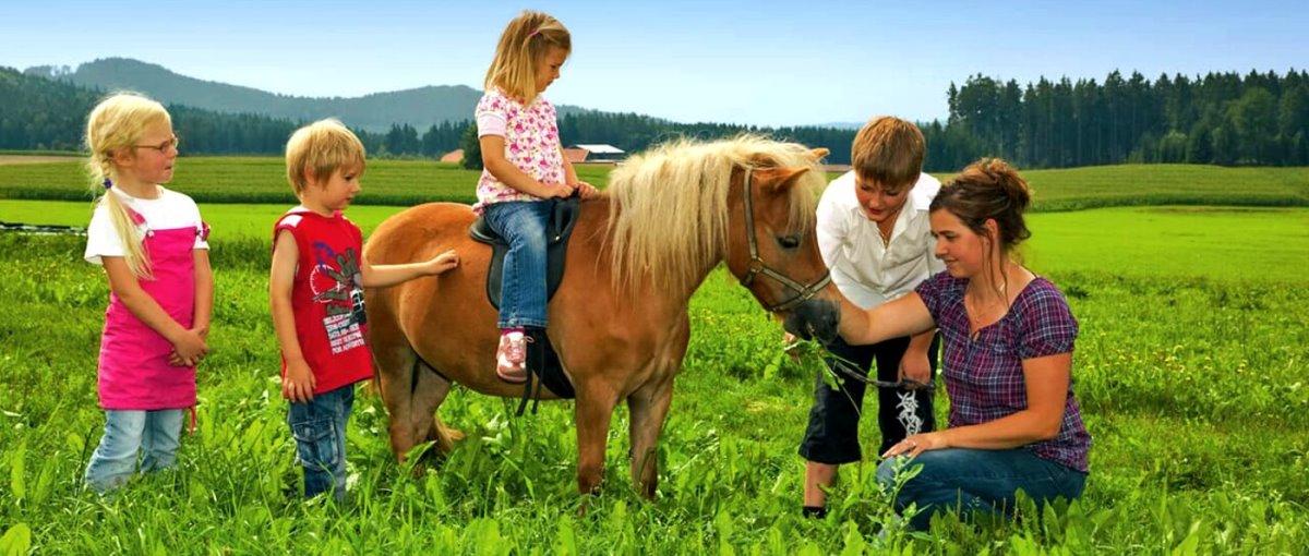 Wouznhof in Spielberg Bauernhof Eiber in Waldmünchen Urlaub mit Kindern