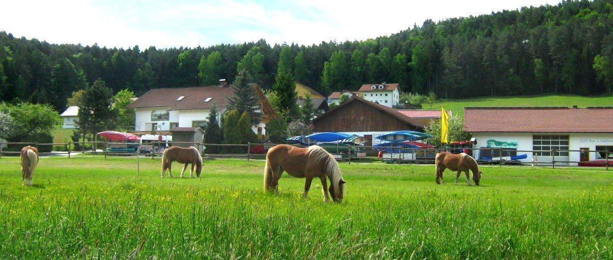 You are currently viewing Ferienhof Zankl in Miltach – Kanu fahren am Regen ab Blaibach